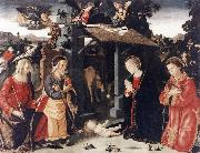 ANTONIAZZO ROMANO Nativity with Sts Lawrence and Andrew  kkk oil