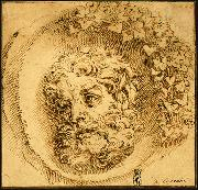 CARRACCI, Agostino Head of a Faun in a Concave (roundel) dsf painting