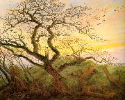 Caspar David Friedrich The Tree of Crows oil on canvas