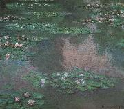 Claude Monet Waterlilies oil painting