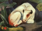 Franz Marc The Bull china oil painting artist