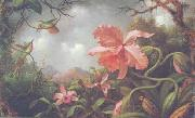 Martin Johnson Heade Hummingbirds and Two Varieties of Orchids painting