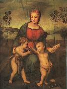 Raphael Madonna of the Goldfinch oil painting reproduction