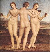RAFFAELLO Sanzio The Three Graces F oil painting