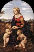 RAFFAELLO Sanzio The Virgin and Child with Saint John the Baptist (La Belle Jardinire)  af oil painting