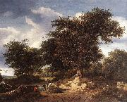 RUISDAEL, Jacob Isaackszon van The Great Oak af oil