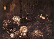 SCHRIECK, Otto Marseus van Still-Life with Insects and Amphibians ar oil on canvas