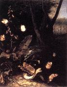 SCHRIECK, Otto Marseus van Still-life with Plants and Reptiles ery oil on canvas
