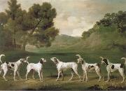 George Stubbs Some Dogs oil painting reproduction