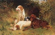 unknow artist Some Dogs oil painting reproduction