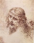 LEONARDO da Vinci Head and shoulders Christs painting