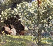 Peder Severin Kroyer Rose Garden oil painting reproduction