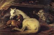 Sir Edwin Landseer The Arab Tent china oil painting artist