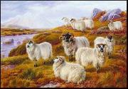 unknow artist Sheep 063 china oil painting reproduction