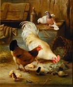 unknow artist Cocks 105 china oil painting reproduction