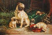 unknow artist Dogs 028 china oil painting reproduction