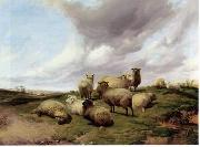 unknow artist Sheep 146 china oil painting reproduction