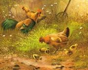 unknow artist Cocks 100 china oil painting reproduction