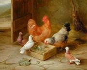 unknow artist Cocks 107 china oil painting reproduction