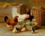 unknow artist Cocks 106 china oil painting reproduction