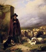unknow artist Sheep 176 china oil painting reproduction