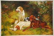 unknow artist Dogs 033 china oil painting reproduction
