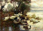 unknow artist Ducks 095 china oil painting reproduction