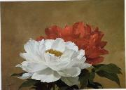 unknow artist Still life floral, all kinds of reality flowers oil painting 34 oil painting reproduction