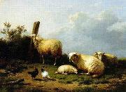 unknow artist Sheep 070 oil painting reproduction