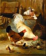 unknow artist Cocks 139 china oil painting reproduction
