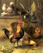 unknow artist Poultry 099 china oil painting reproduction