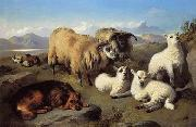 unknow artist Sheep 191 oil painting reproduction