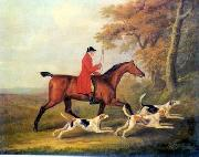 unknow artist Classical hunting fox, Equestrian and Beautiful Horses, 105. china oil painting reproduction