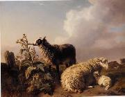 unknow artist Sheep 082 china oil painting reproduction