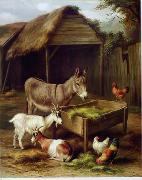 unknow artist Cocks and Sheep 079 china oil painting reproduction