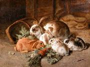 unknow artist Rabbits 135 china oil painting reproduction