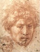 Andrea del Sarto Head of a Young Man painting