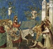 GIOTTO di Bondone Entry into Jerusalem oil painting reproduction