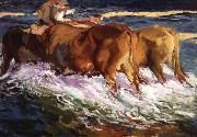 Joaquin Sorolla Y Bastida Oxen Study for the Afternoon Sun painting