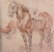 Peter Paul Rubens Horse painting