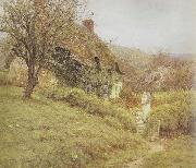Helen Allingham,RWS South Country Cottage (mk46) oil on canvas