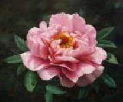 unknow artist Realistic Pink Rose oil on canvas