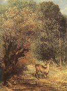 Gustave Courbet Deer china oil painting reproduction