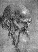 Albrecht Durer Head of an Apostle Looking Downward painting