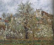 Camille Pissarro spring flowering gardens and trees oil painting reproduction