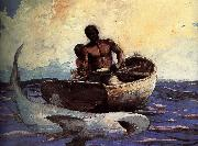 Winslow Homer Shark oil painting on canvas