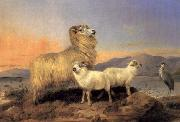 Richard ansdell,R.A. A Ewe with Lambs and A Heron Beside A Loch oil