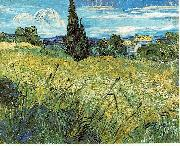 Vincent Van Gogh Green Wheat Field with Cypress china oil painting reproduction