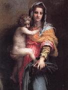 Andrea del Sarto Madonna of the Harpies oil painting reproduction