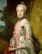 Anton Raphael Mengs Portrait of Maria Luisa of Spain oil painting